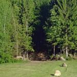 Am Ende der Driving Range geht es noch 20 Meter in den Wald hinein.